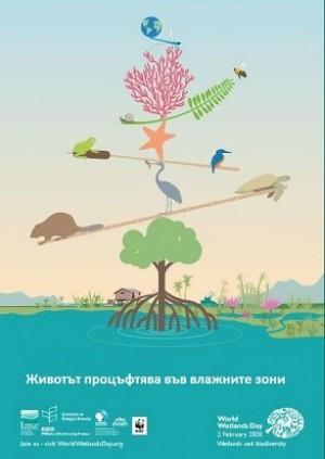 """2-ри февруари - Световен ден на влажните зони: """"Животът процъфтява във влажните зони"""""""