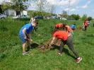 Засаждане на дръвчета за Ден на Земята